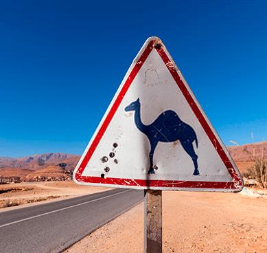 Seguridad Marruecos