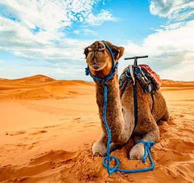 Transporte Marruecos